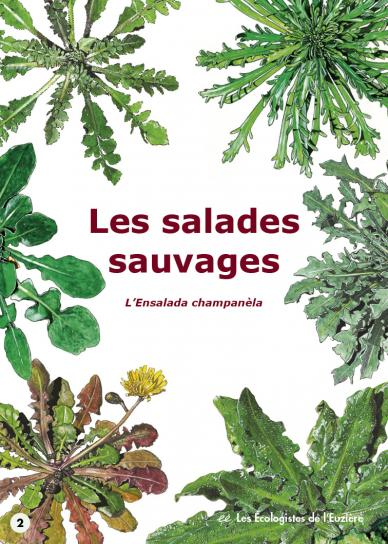 image Salades2017couv24.jpg (0.4MB)