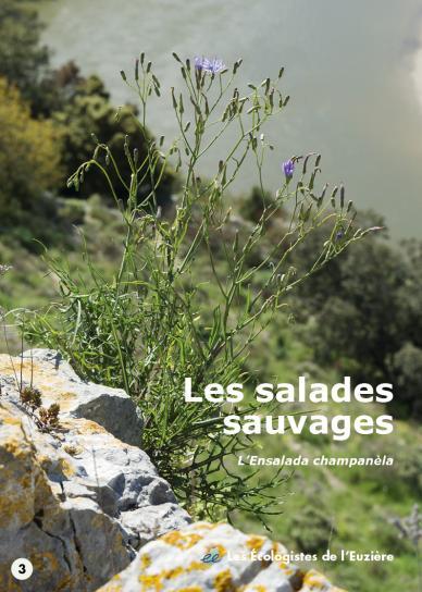 image Salades2017couv34.jpg (0.3MB)
