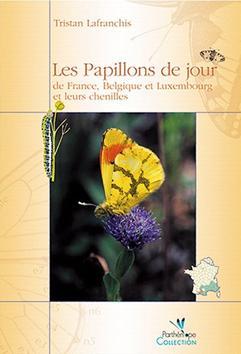 image Papillonsjour2.jpg (0.1MB)