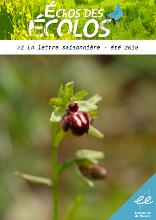 image LettreEE1_min.jpg (32.8kB) Lien vers: http://www.euziere.org/?RessourcesLettre/download&file=EchosEcolos2_ete2019.pdf