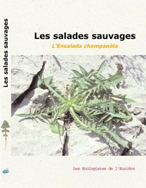 image salade.jpg (31.5kB)